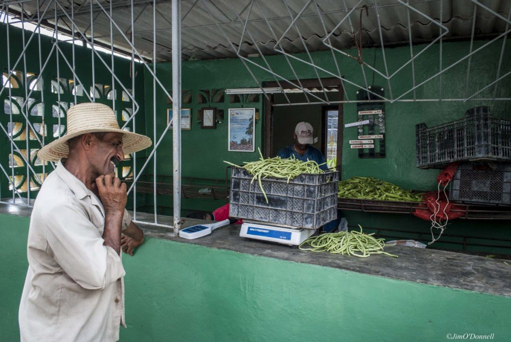 Urban agriculture in Cuba