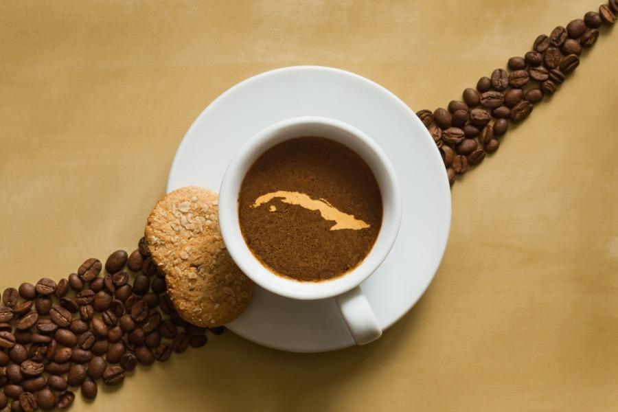 Cuban coffee farms