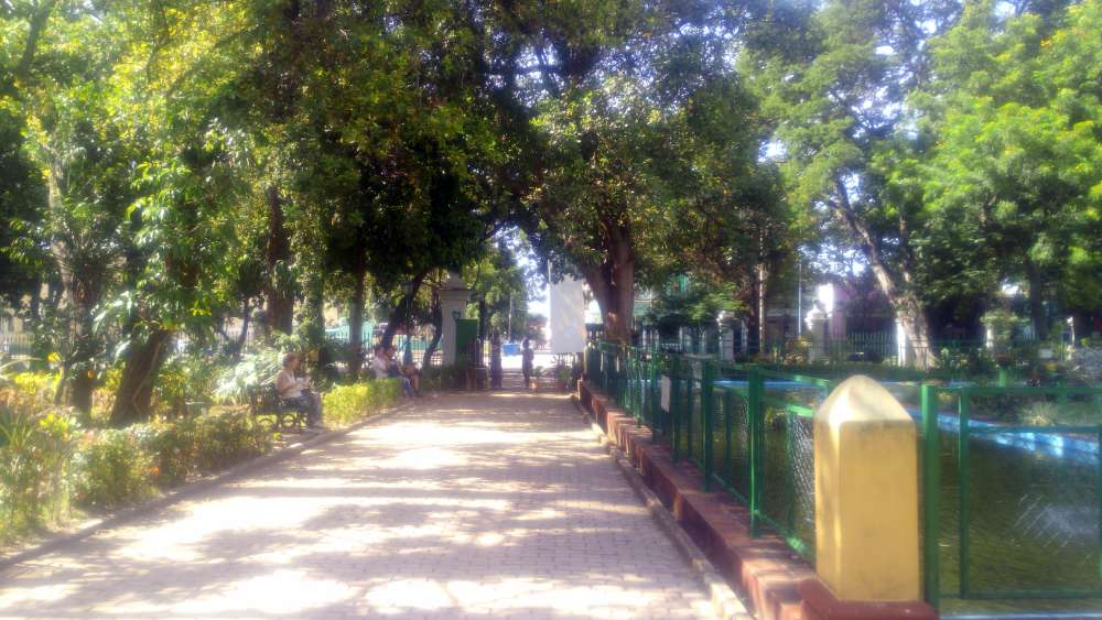 Botanical gardens cuba