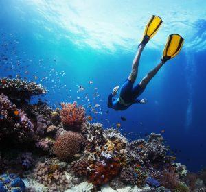 snorkel cuba