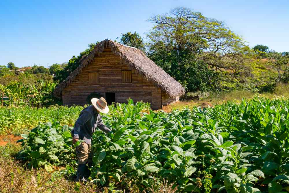 Sustainable travel to cuba