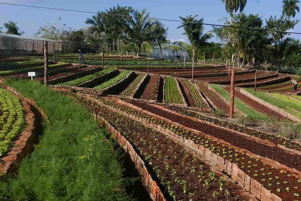 Cuba nature responsible travel